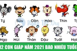 12 con giáp năm 2021 bao nhiêu tuổi?