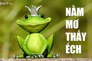 Điềm báo nằm mơ thấy ếch đánh con gì?