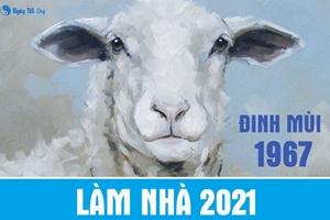 Đinh Mùi 1967 LÀM NHÀ năm 2021 được không?