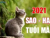 SAO HẠN 2021 tuổi Mão: Đầy đủ các tuổi Tân Mão, Quý Mão, Ất Mão, Đinh Mão, Kỷ Mão