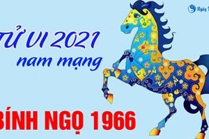 Xem tử vi 2021 tuổi Bính Ngọ sinh năm 1966 - Nam mạng