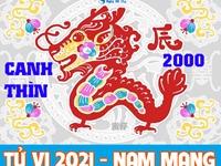 Xem tử vi 2021 tuổi Canh Thìn sinh năm 2000 - Nam mạng