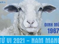 Xem tử vi 2021 tuổi Đinh Mùi sinh năm 1967 - Nam mạng