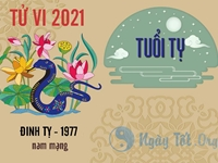 Xem tử vi 2021 tuổi Đinh Tỵ sinh năm 1977- Nam mạng