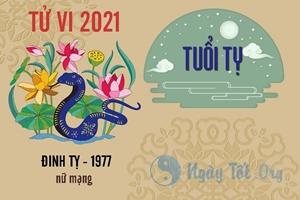 Xem tử vi 2021 tuổi Đinh Tỵ sinh năm 1977 - Nữ mạng