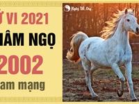 Xem tử vi 2021 tuổi Nhâm Ngọ sinh năm 2002 - Nam mạng