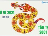 Xem tử vi 2021 tuổi Tân Tỵ sinh năm 2001 - Nam mạng