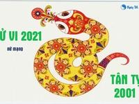 Xem tử vi 2021 tuổi Tân Tỵ sinh năm 2001 - Nữ mạng