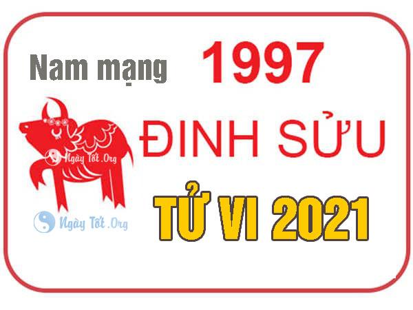 dinh suu 2021 nam, sinh 1997